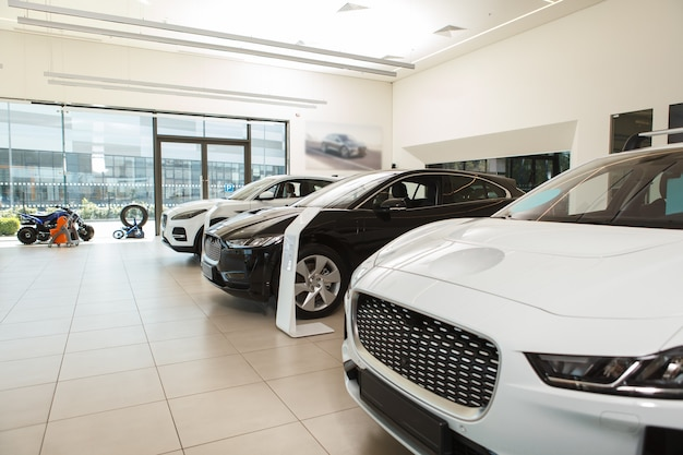 New cars at auto dealership for sale, copy space