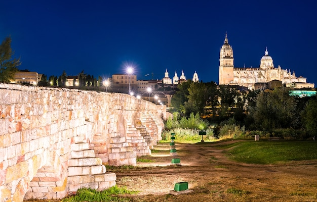 The new cathedral and the roman bridge in salamanca - castile and leon, spain