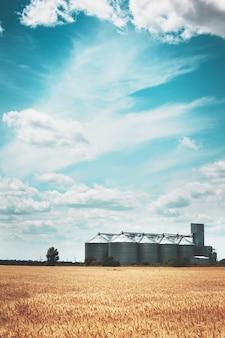 밀밭 배경에 있는 새로운 곡물 엘리베이터