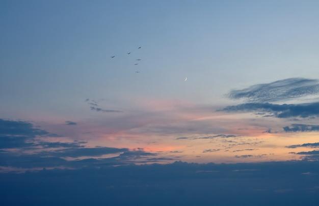 新月と美しい夕日。劇的な自然の背景。