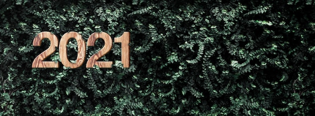 New year 2021 wood texture on tropical dark green leaf foliage wall at outdoor