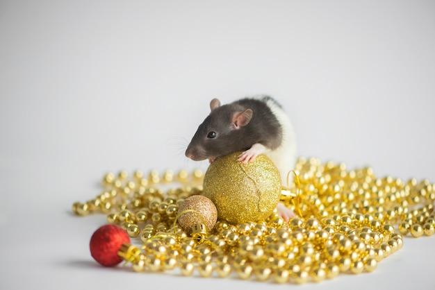 Новогодняя открытка. символ новогодней 2020 крысы с рождественским декором золотыми и красными шарами на белом