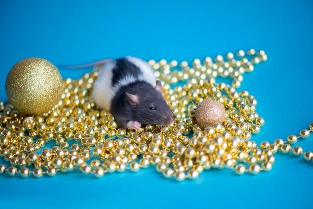 Новогодняя открытка. символ новогодней 2020 крысы с рождественским декором золотыми шарами на синем