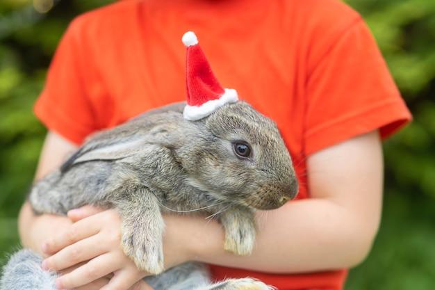 애완 동물과 함께 새 해 아이입니다. 작은 토끼, 전나무, 크리스마스 트리 근처 선물 상자에 산타 클로스 모자에 아기 토끼.