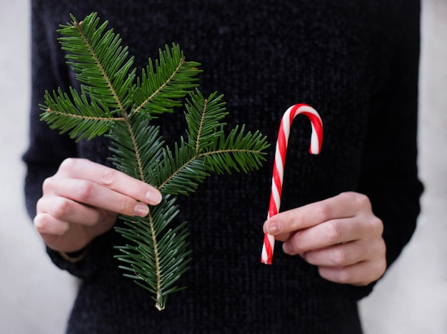 New year christmas xmas holiday celebration woman hand holding candy canes fir tree branch, copy space. template greeting
