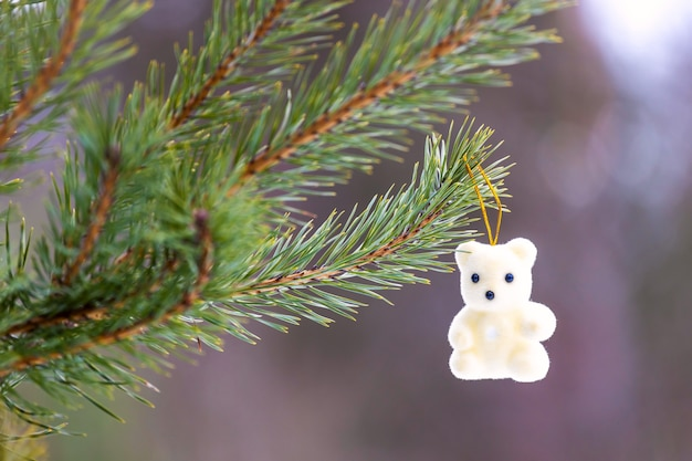 New year's toy white teddy bear hangs on a branch of a christmas tree in the woods. high quality photo