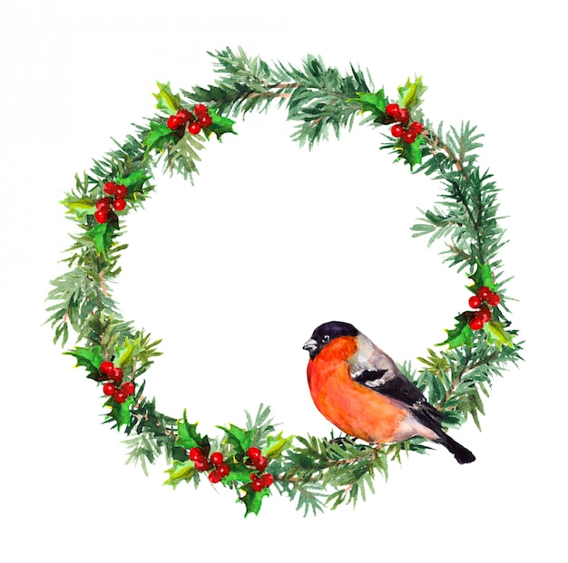 New year wreath - spruce and bullfinch bird. watercolor