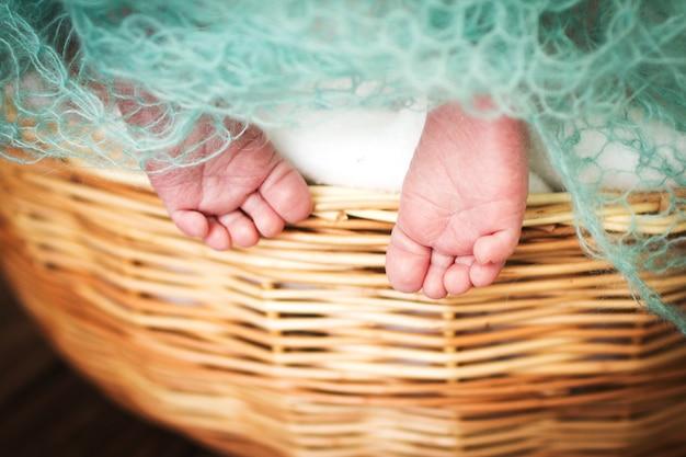 Newborn baby feet. kids legs in the wicker basket