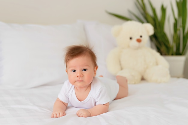 Newborn baby girl resting in bed. infant lies on his stomach in bed with a teddy bear