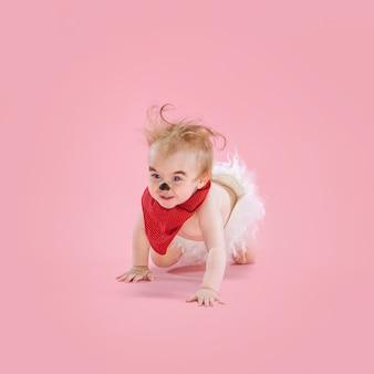 Newborn baby girl wearing a halloween costume on pink studio background