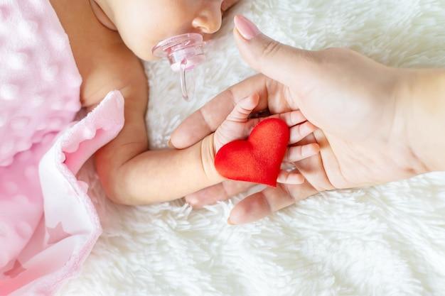 生まれたばかりの赤ちゃんは母の手を握っています