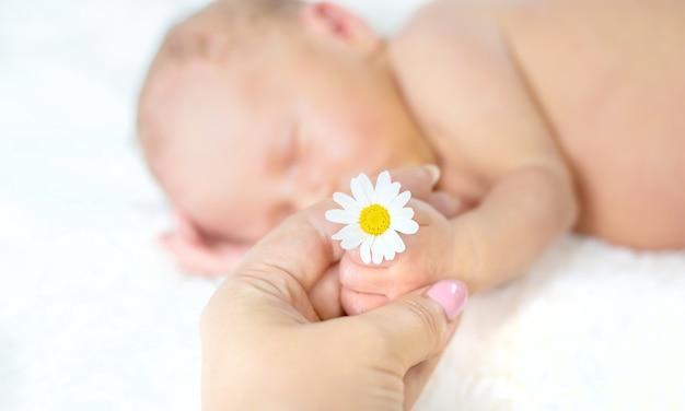 Новорожденный ребенок спит с ромашкой