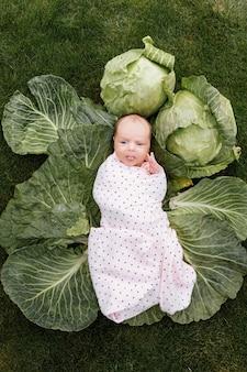 Новорожденная девочка 3 месяца лежит в зеленой капусте.