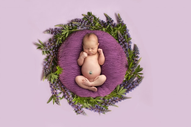 Newborn girl on a pink background with purple flowers, circle