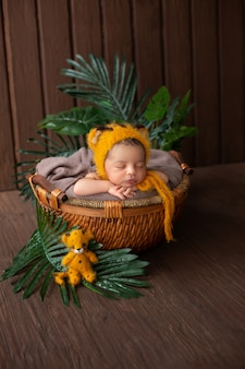 Newborn little cute and likeable baby boy laying in little cute yellow animal shaped hat inside brown basket along with green leafs in wooden brown room