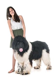 ニューファンドランド犬と女性
