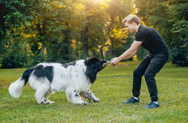 뉴 펀들 랜드 개는 공원에서 남자와 여자와 함께 재생