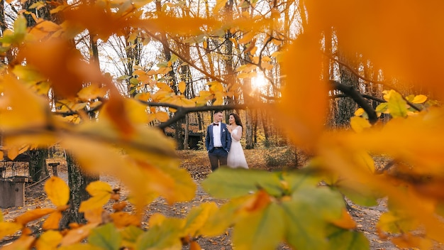 Newlyweds bride and groom walk in the autumn park in the foreground is a branch with yellow leaves