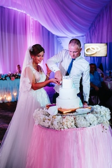 Newlyweds happily cut, laugh and taste the wedding cake