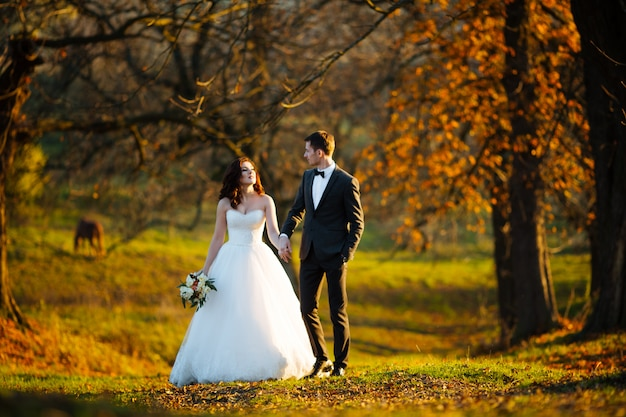 Newlyweds kissing and smiling on their wedding day on the walk outdoors. funny bride with bouquet of flowers.