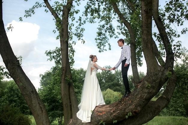신혼 부부는 나무에 포즈