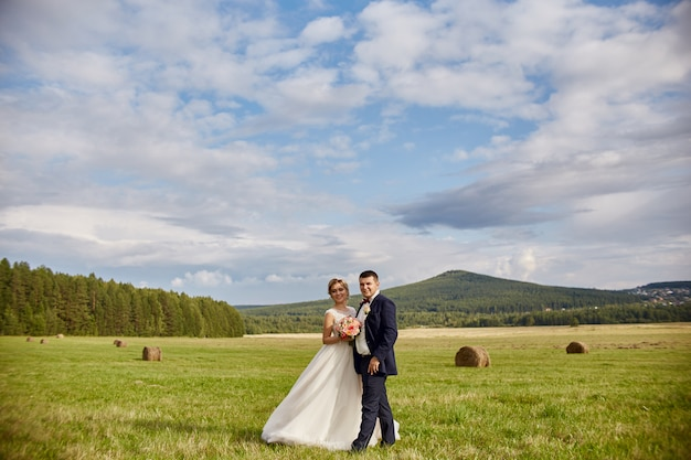 Newlyweds walk and relax in the field, wedding