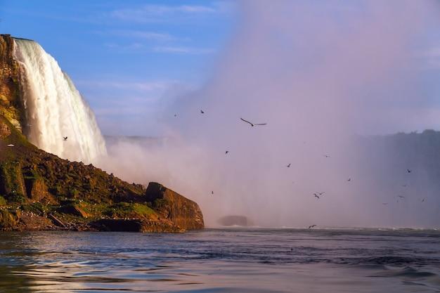 Ниагарский водопад, канада, чайки, летящие в розовом водном тумане на фоне закатного неба