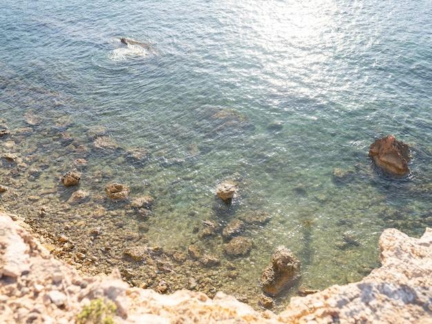 イビサ天頂計画の素敵なビーチ