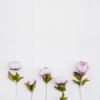 Nice flowers on wood background with space on top