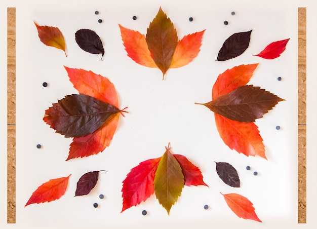 Nice frame with colorful autumn items for mockups