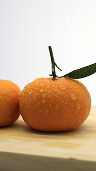 Nice and fresh orange photoshoot