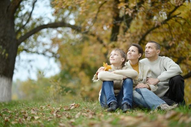 素敵な幸せな家族は秋の公園を散歩します