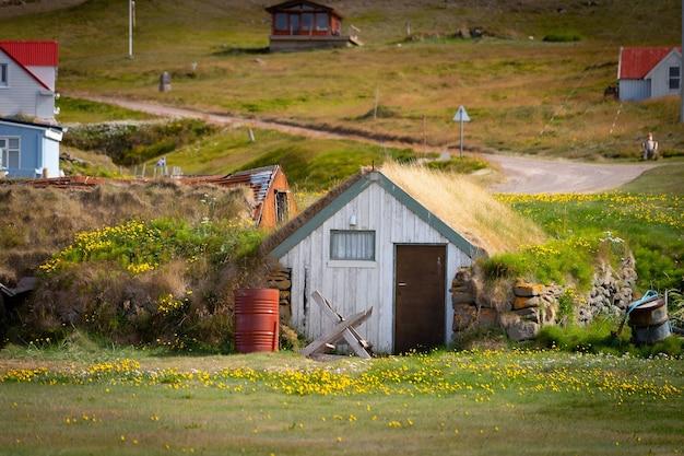 芝生の屋根と緑の草のある素敵なアイスランドの家。