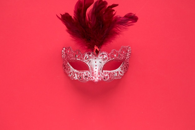 Nice mask with feathers
