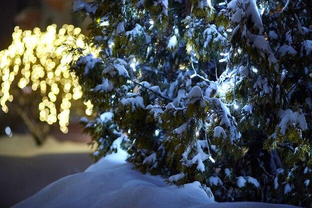 クリスマスツリーの枝に夜の電灯の花輪