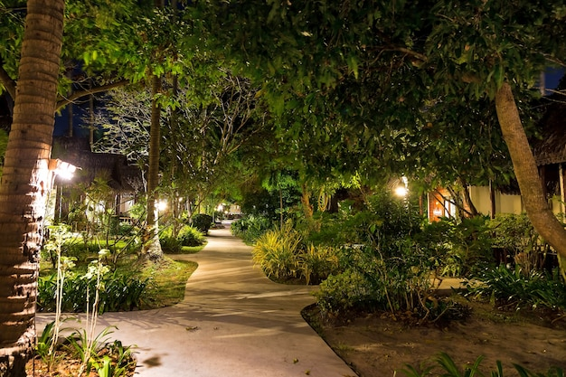 Night and empty footpath through the village in the jungle forest lots of greenery wooden houses