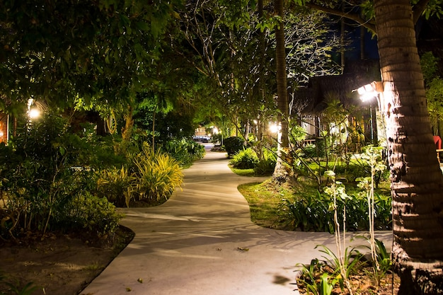 Night empty footpath through village in jungle lots greenery wooden houses lamps on palm trees