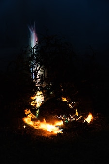 Night forest landscape bonfire at the summer evening bonfire with sparks flying around
