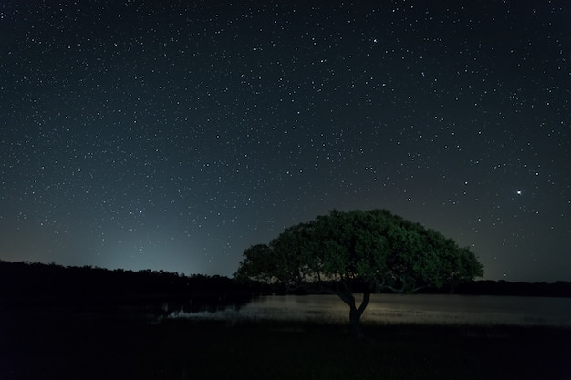 Montehermoso 근처 밤 풍경입니다.
