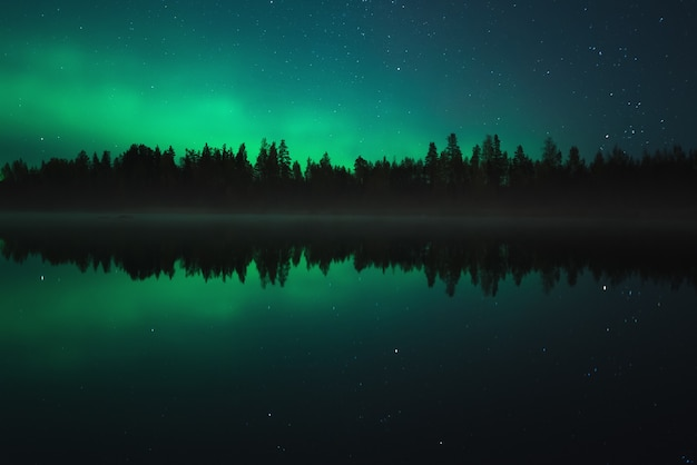 Night scenery. aurora borealis reflected in a forest lake