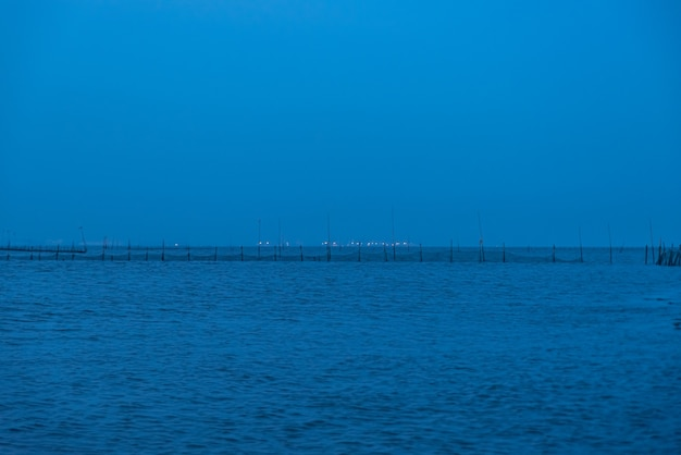 At night in the shoal, blue envelops everything.