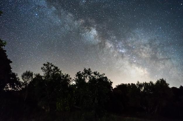 스페인의 숲 위의 은하수와 밤하늘