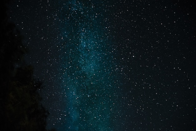 Night starry sky and the milky way