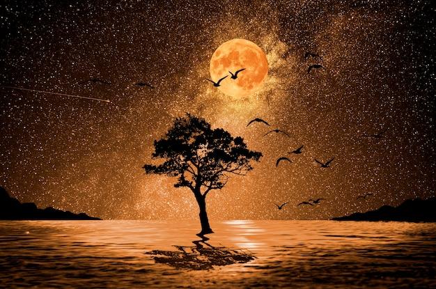 背景の湖と月の夜の木