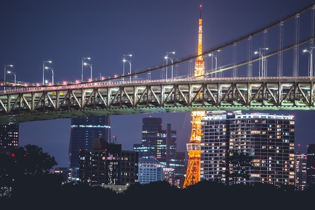 Night view rainbow bridge and tokyo tower.tokyo city skyline background from tokyo bay odaiba, japan