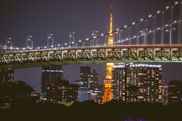 Night view rainbow bridge and tokyo tower.tokyo city skyline background from tokyo bay odaiba, japan