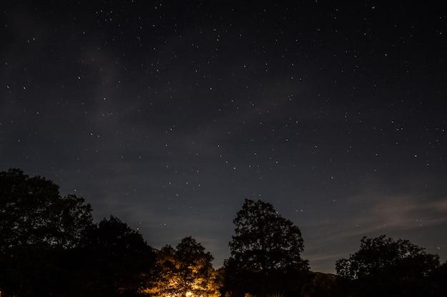 Night with starry sky, a small light illuminating a tree