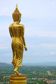 Nine metres high golden buddha