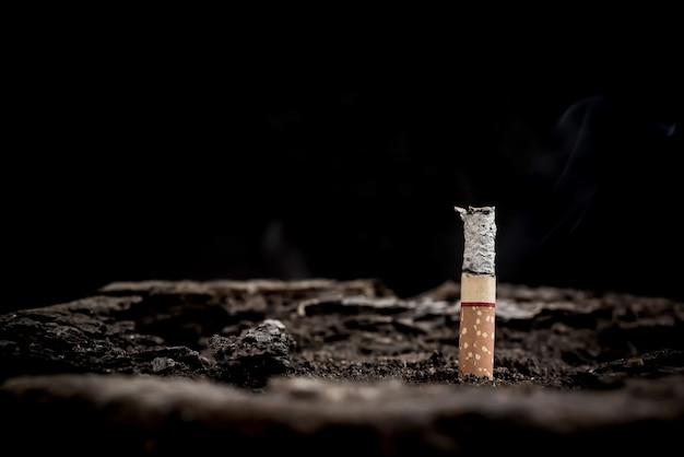 Нет и бросьте курить во всемирный день без табака.