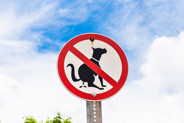 Никакие следы собачьих экскрементов на переднем дворе